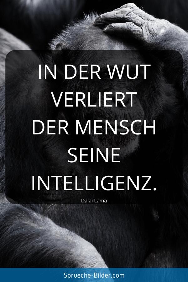 Kurze Sprüche - In der Wut verliert der Mensch seine Intelligenz. Dalai Lama