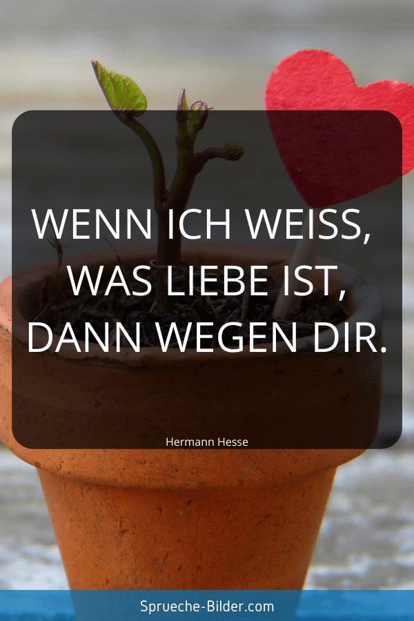 Kurze Sprüche - Wenn ich weiß, was Liebe ist, dann wegen dir. Hermann Hesse