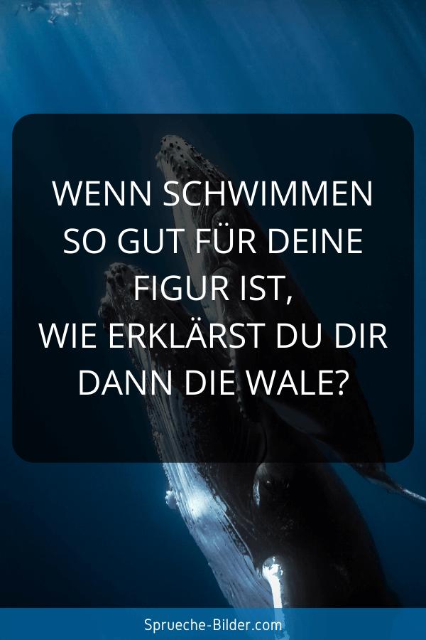 Lustige Sprüche - Wenn Schwimmen so gut für deine Figur ist, wie erklärst du dir dann die Wale?