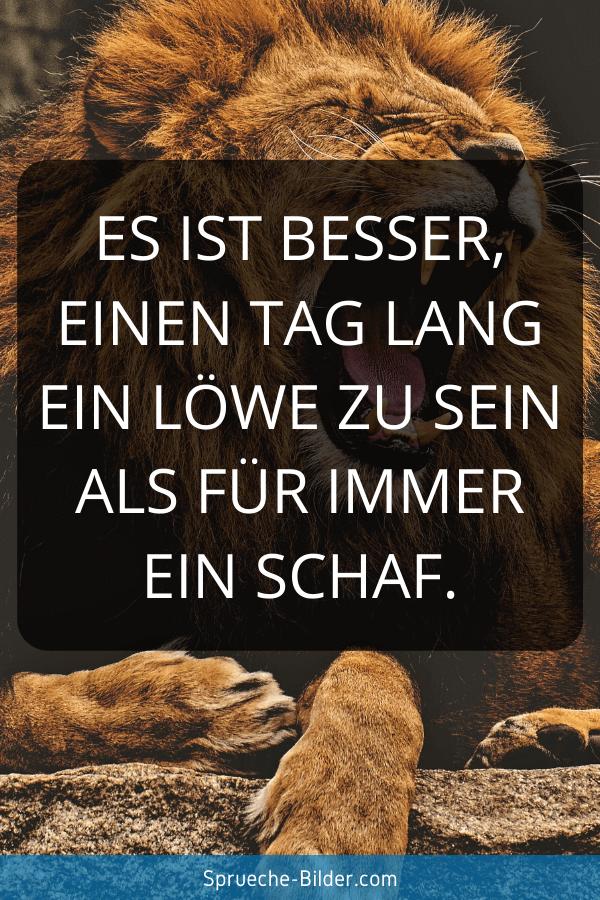 Mut Sprüche - Es ist besser, einen Tag lang ein Löwe zu sein als für immer ein Schaf.