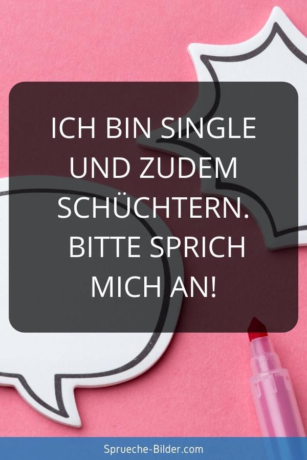 Süße Sprüche - Ich bin Single und zudem schüchtern. Bitte sprich mich an!