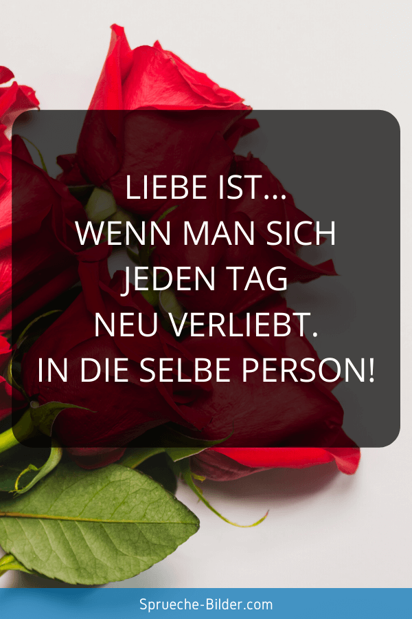 Süße Sprüche - Liebe ist… wenn man sich jeden Tag neu verliebt. In die selbe Person!