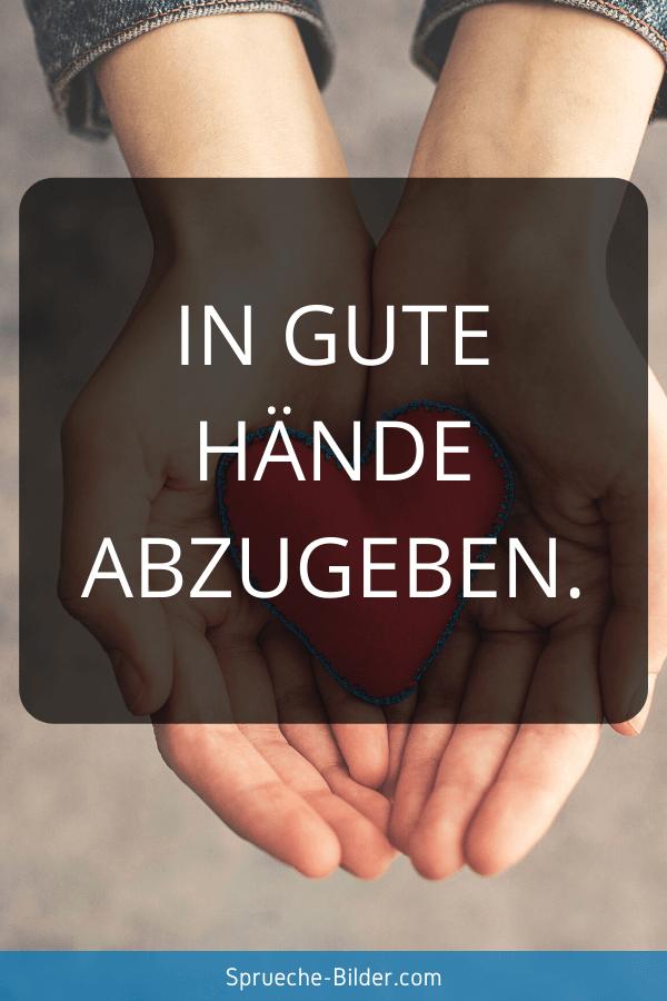 Status Sprüche - In gute Hände abzugeben.