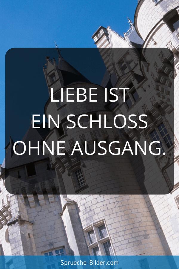Status Sprüche - Liebe ist ein Schloss ohne Ausgang.
