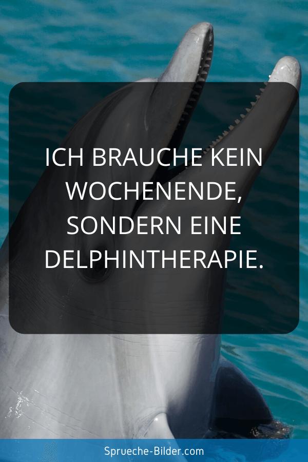 WhatsApp Sprüche - Ich brauche kein Wochenende, sondern eine Delphintherapie.